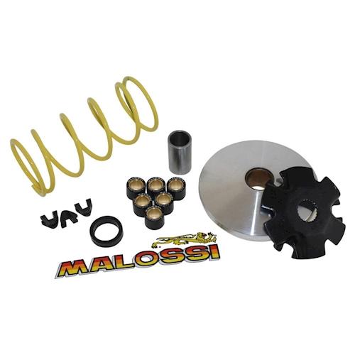 97-02 Variomatik MALOSSI Multivar für Suzuki AY 50 AC Katana AA4112 Bj