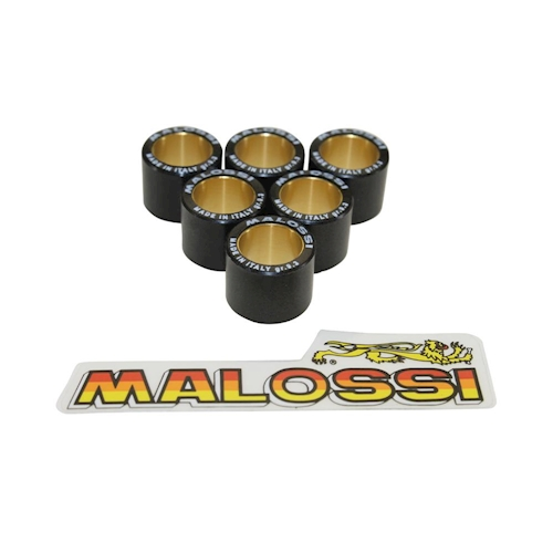 10,7g Variomatikgewichte Malossi HT 19x17mm