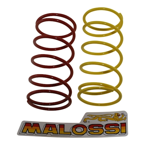 gegendruckfeder-set MALOSSI PARA YAMAHA YW 100 Bws Año FAB. 99-00